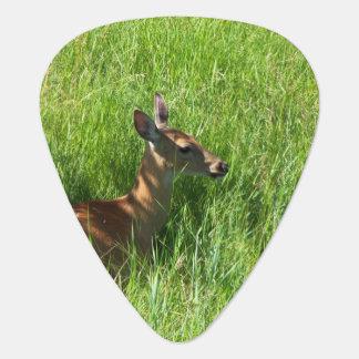 Deer Sitting in the Grass Guitar Pick
