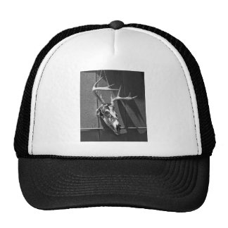 Deer Skull and Antlers in Black and White Hats