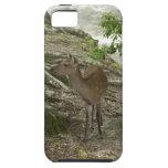 Deer Tough iPhone 5 Case