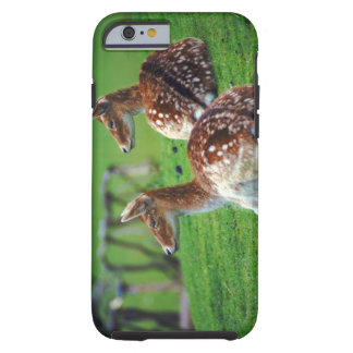 deer tough iPhone 6 case