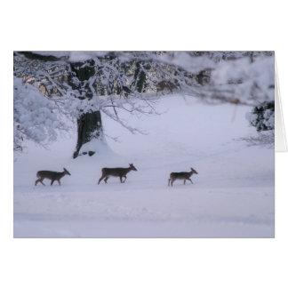 Deer walking in snow notecard