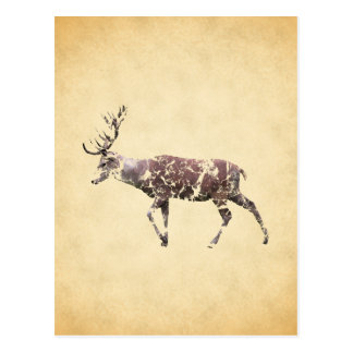 Deer with a Grungy Look Postcard