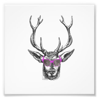 Deer with Pink Sunglasses Photo Print