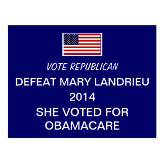Defeat MARY LANDRIEU 2014 Postcard