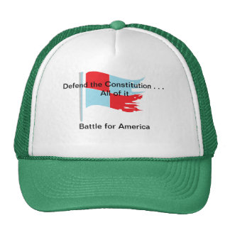 Defend the Constitution . . . All of it Cap
