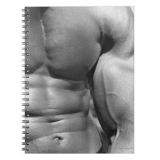 Defined abdomen and bicep notebook