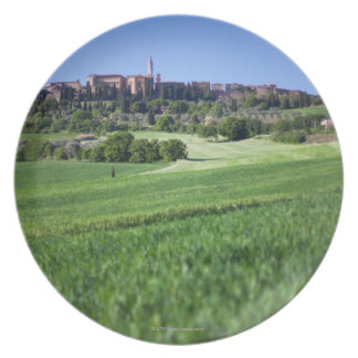 defocused grainfield with on pienza, tuscany, plate
