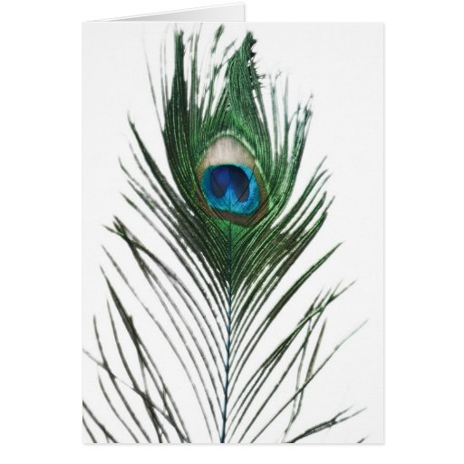 Defused Peacock Feather Greeting Card