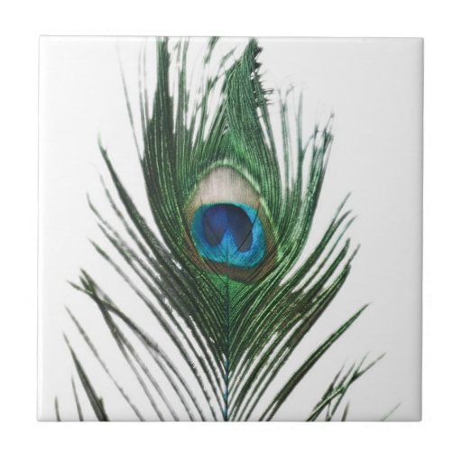 Defused Peacock Feather Trivet Tile