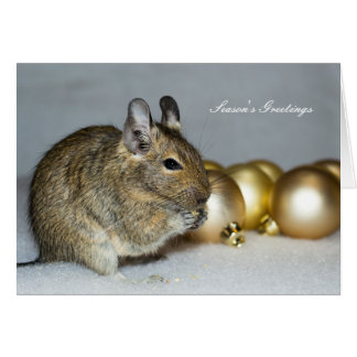 Degu & Baubles Season's Greetings Christmas Card