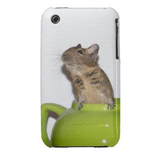 Degu in a Green Teapot iPhone 3G/3GS Case iPhone 3 Cases