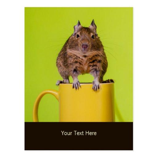 Degu Sitting on a Mug Personalized Postcards