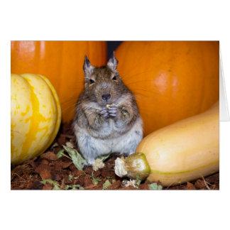 Degu with Pumpkin & Squash Greeting Card