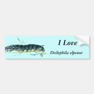 Deilephila elpenor caterpillar bumper sticker