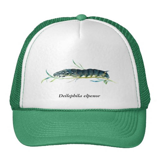 Deilephila elpenor caterpillar trucker hats