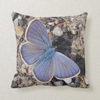 Dekokissen blue butterfly pillows