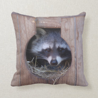 Dekokissen raccoon photo: Jean Louis Glineur Cushion
