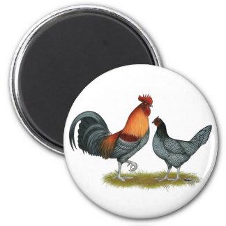 Delaware Blue Hen Magnet