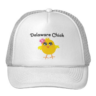 Delaware Chick Hat