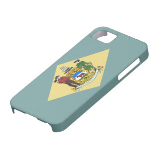 Delaware flag barely there iPhone 5 case