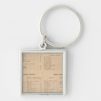 Delaware Index Key Ring