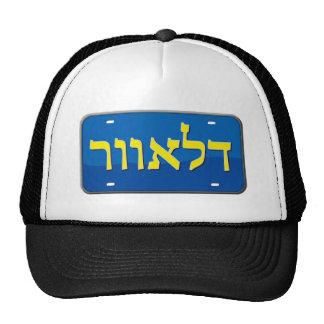 Delaware License Plate in Hebrew Mesh Hat