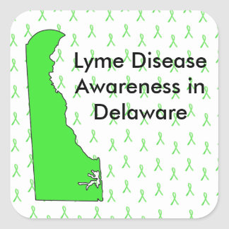 Delaware Lyme Disease Awareness Stickers