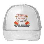 Delaware Mesh Hat