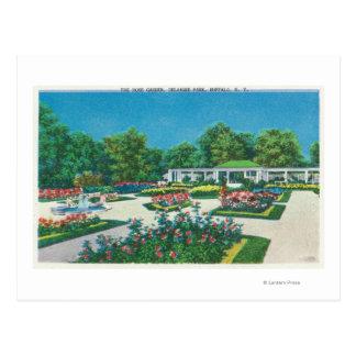 Delaware Park Rose Garden View Postcard