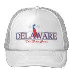 Delaware Patriotic Hat