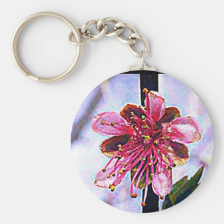 Delaware Peach Blossom Keychains