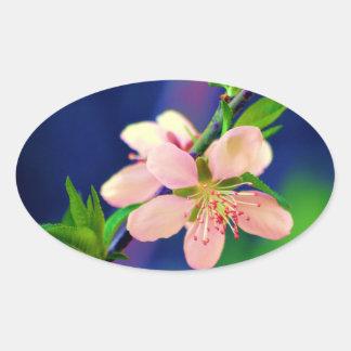 Delaware Peach Blossoms Oval Sticker
