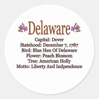 Delaware State Info Sticker