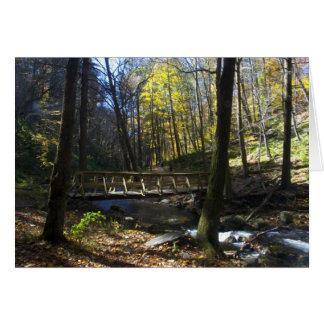 Delaware Water Gap, NJ - Dunnfield Creek Card