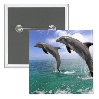 Delfin 15 Cm Square Badge