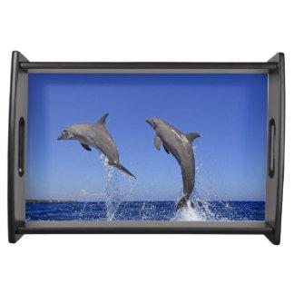 Delfin 2 serving tray