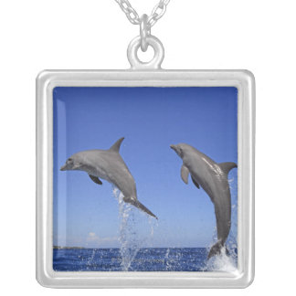 Delfin 2 silver plated necklace