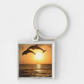 Delfin 3 key ring