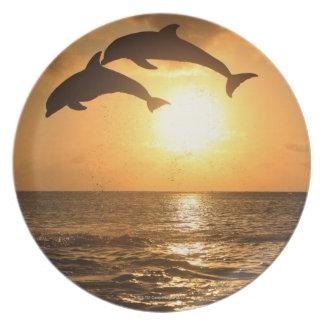 Delfin 3 plate