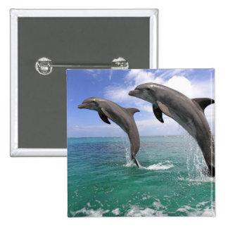 Delfin 15 Cm Square Badge
