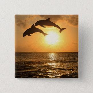 Delfin,Delphin,Grosser Tuemmler,Tursiops 15 Cm Square Badge