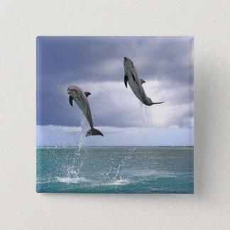 Delfin,Delphin,Grosser Tuemmler,Tursiops 2 15 Cm Square Badge