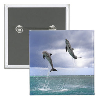 Delfin,Delphin,Grosser Tuemmler,Tursiops 2 15 Cm Square Badge