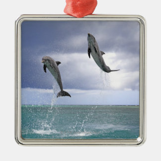 Delfin,Delphin,Grosser Tuemmler,Tursiops 2 Christmas Ornament
