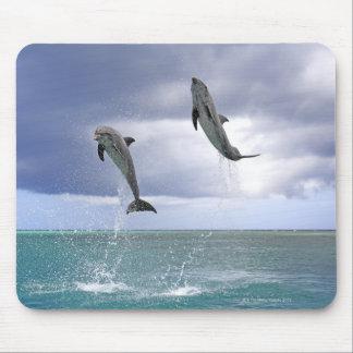 Delfin,Delphin,Grosser Tuemmler,Tursiops 2 Mouse Mat