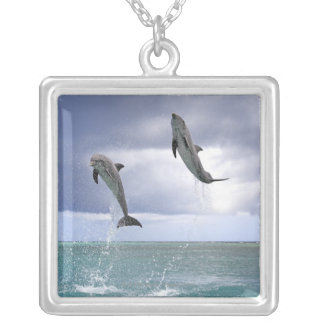 Delfin,Delphin,Grosser Tuemmler,Tursiops 2 Silver Plated Necklace