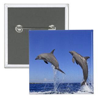 Delfin,Delphin,Grosser Tuemmler,Tursiops 3 15 Cm Square Badge