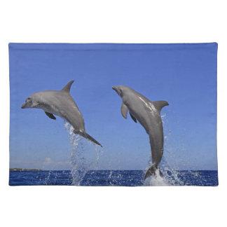 Delfin,Delphin,Grosser Tuemmler,Tursiops 3 Placemat