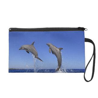 Delfin,Delphin,Grosser Tuemmler,Tursiops 3 Wristlet