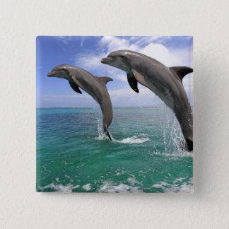 Delfin,Delphin,Grosser Tuemmler,Tursiops 4 15 Cm Square Badge